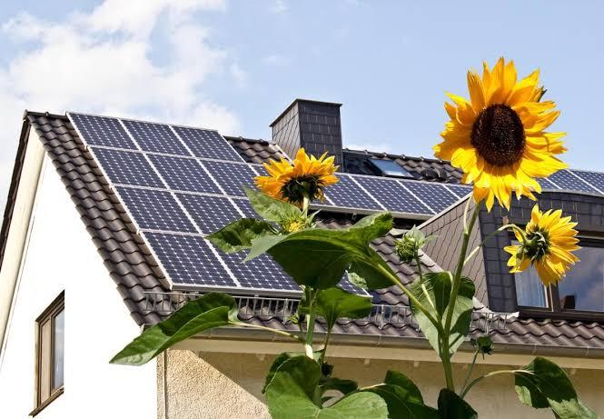 La casa ecológica se adapta al medio ambiente para no dañarlo