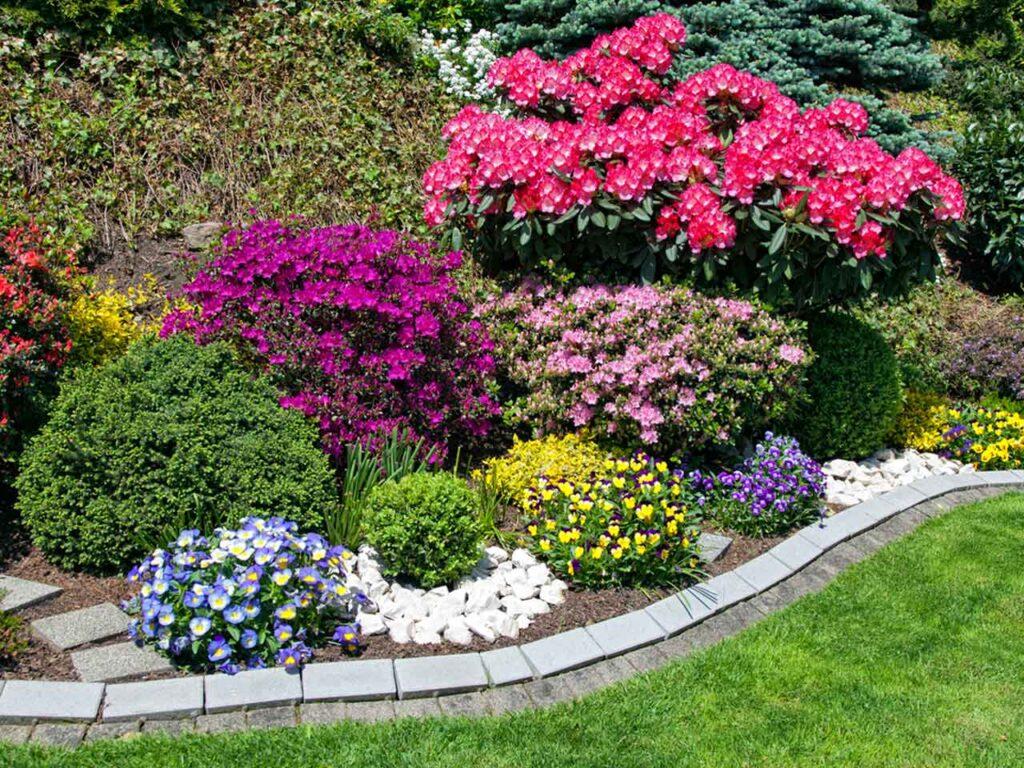 Las flores de colores son muy importantes en cualquier jardín