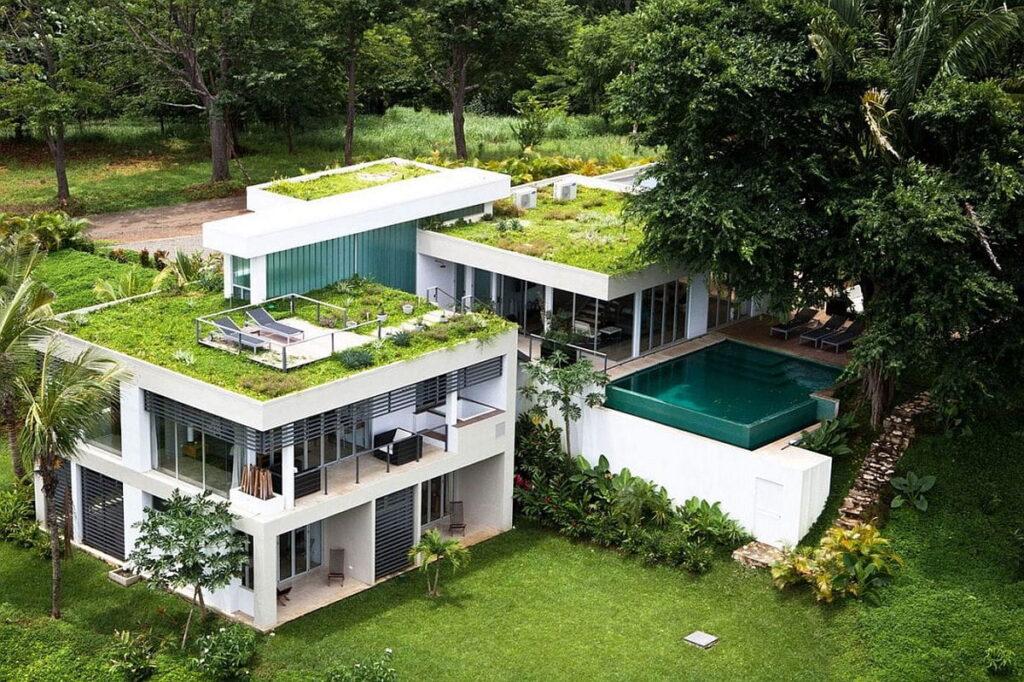 Techos verdes en azotea de casa de dos pisos