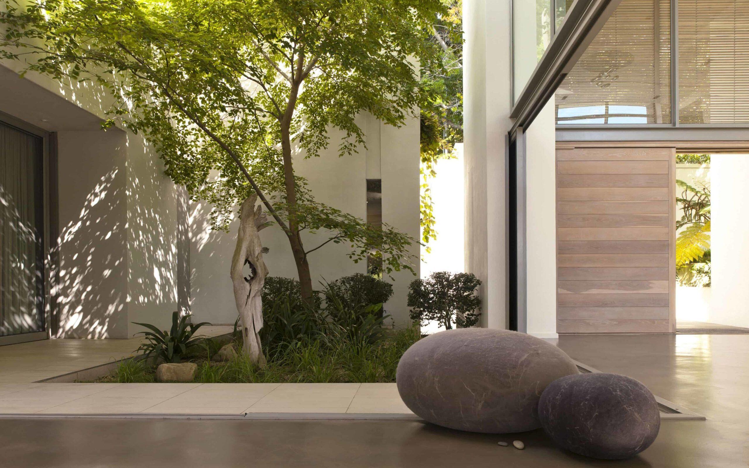 Los árboles con hojas verdes nos transmiten tranquilidad en los diseños de casas.