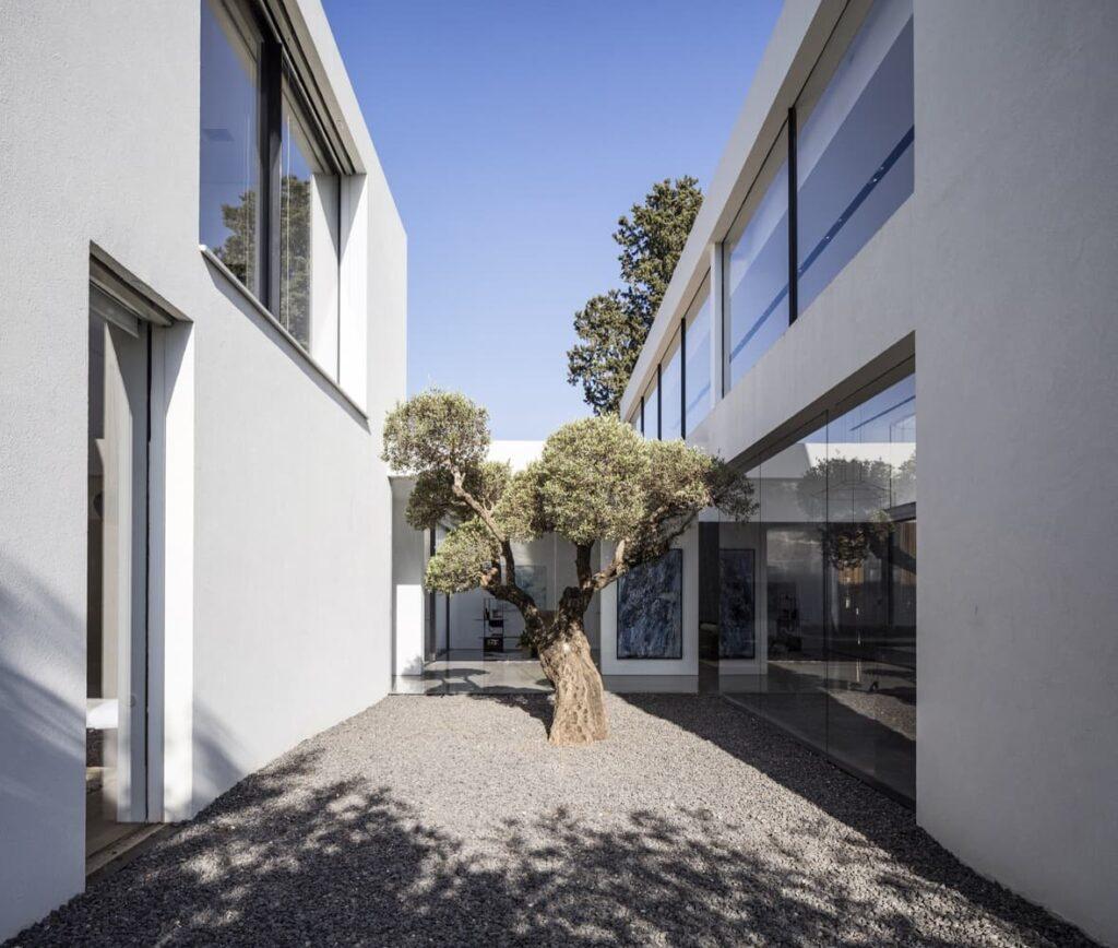 diseño de casas de dos pisos, jardín interior de casa moderna
